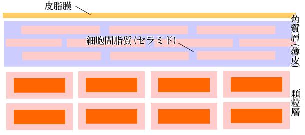 hyouhi